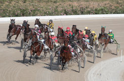 Horse harness race pack Royalty Free Stock Images