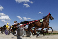 Horse harness race 013. Riders compete during a horse harness race in Palma de Mallorca´s hippodrome royalty free stock image