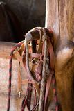 Horse harness  and stable box. Horse harness  and wooden stable box Stock Photos