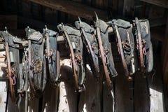 Horse Harness Royalty Free Stock Photo