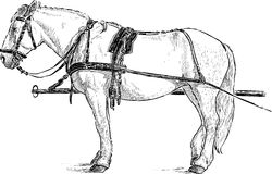 Horse in the harness. Vector image of a with horse in the harness Royalty Free Stock Photo