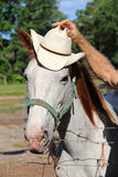 Horse hat vertical Royalty Free Stock Photo