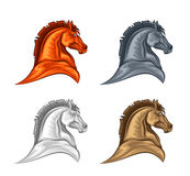 Horse head Royalty Free Stock Photos