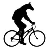 Horse head bicyclist riding a bicycle isolated on white background Stock Photos