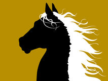 Horse head - black and white. Black horse turned away, looking at something, wind playing with its white hair Stock Photography