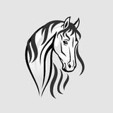 The Horse head in black and white - Illustration Royalty Free Stock Photography