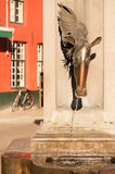 Horse Head Drinking Fountain Royalty Free Stock Photo