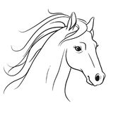 Horse head with flowing mane portrait side view, pen and ink sty Royalty Free Stock Photos