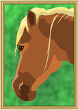 Horse head. With grass background in a frame royalty free illustration