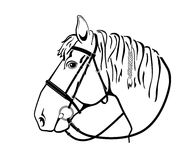 Horse head in harness, black and white drawing. Isolated dashed head of a horse in harness stock illustration