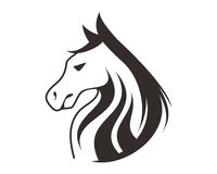HORSE HEAD LINE ART DRAWING ILLUSTRATION Stock Image