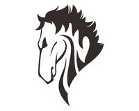 HORSE HEAD LINE ART DRAWING ILLUSTRATION Royalty Free Stock Images
