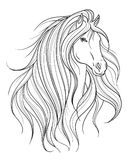 Horse head in line art style. Tattoo art. Isolated element. Royalty Free Stock Images