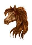 Horse head with long wavy mane Stock Photos