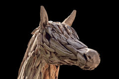 Horse head. Stock Photography
