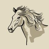 Horse head with a mane. Hand drawn vector illustration. Hand sketch Stock Images