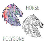 Horse head polygons coloured and outline vector stock illustration