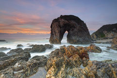Horse Head Rock, Bermagui Australia Royalty Free Stock Images