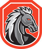 Horse Head Shield Retro Royalty Free Stock Images