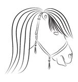 Horse head in sketch style. Symbol of new 2014 year Royalty Free Stock Photography