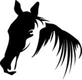 Horse head solid color abstract. Horse head black and white drawing image  with one side lighting effect Royalty Free Stock Photo
