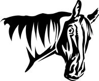 Horse head solid color abstract. Horse head black and white drawing image  with one side lighting effect Royalty Free Stock Photography