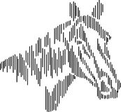 Horse head standing line drawing. Horse head black and white standing line drawing image  with one side lighting effect Stock Photos