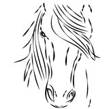Horse head on white background Stock Photography