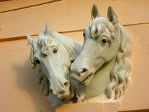 Horse heads Royalty Free Stock Photos