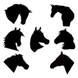 Horse heads silhouettes set- Royalty Free Stock Image