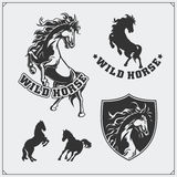 Horse heraldry coat of arms. Labels, emblems and design elements for sport club. Black and white Royalty Free Stock Photography