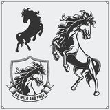 Horse heraldry coat of arms. Labels, emblems and design elements for sport club. Black and white Royalty Free Stock Images