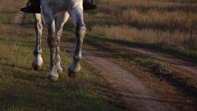 Horse hooves gallop on horseback. Slow motion. Close up