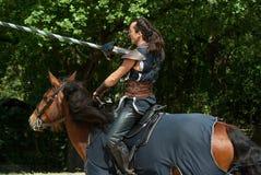 Horse, Horse Like Mammal, Bridle, Horse Harness stock image