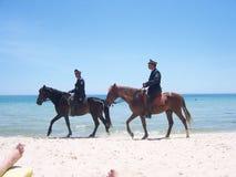 Horse, Horse Like Mammal, Equestrianism, Beach