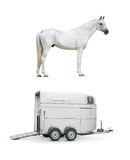 Horse and horse trailer. Isolated stock image