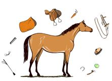 Horse and horseback riding tack. Bridle, saddle, stirrup, brush, bit, harness, supplies, whip equine harness equipments. Stock Image