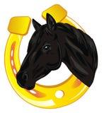 Horse and horsesshoe. Head of black horse peek up from large gold horsesshoe Royalty Free Stock Photo