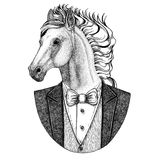 Horse, hoss, knight, steed, courser Hipster animal Hand drawn illustration for tattoo, emblem, badge, logo, patch, t Stock Photo