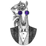 Horse, hoss, knight, steed, courser Hipster animal Hand drawn illustration for tattoo, emblem, badge, logo, patch, t Royalty Free Stock Photo