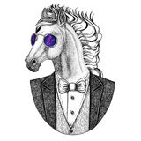 Horse, hoss, knight, steed, courser Hipster animal Hand drawn illustration for tattoo, emblem, badge, logo, patch, t Royalty Free Stock Photography