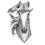 Horse, hoss, knight, steed, courser Wild animal wearing cowboy hat Wild west animal Cowboy animal T-shirt, poster Royalty Free Stock Photo