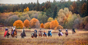 Horse-hunting Royalty Free Stock Photos