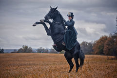 Horse-hunting with ladies in riding habit Royalty Free Stock Photo