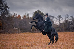 Horse-hunting with ladies in riding habit. Costumes. Historical reconstruction of famous XIXth century russian hounds hunting by horse club Avanpost Stock Photography