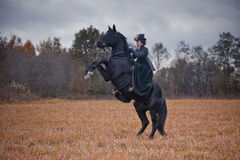 Horse-hunting with ladies in riding habit Royalty Free Stock Images