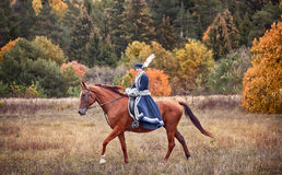 Horse-hunting with riders in riding habit Stock Photo