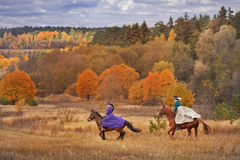 Horse-hunting with riders in riding habit. Historical reconstruction of famous russian hounds hunting by horse club Avanpost in Mozhaisk, Russia. 4 october 2014 Stock Image