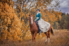 Horse-hunting with riders in riding habit Stock Photos