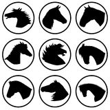 Horse icons. Different horse heads in different situations Royalty Free Stock Photos
